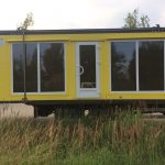 Dzeltena ar brunu liel logi